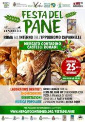 IL PRANIC HEALING ALLA FESTA DEL PANE A ROMA DOMENICA 25 SETTEMBRE 2016